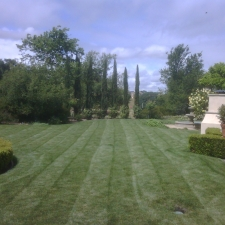 gallery-maintenance-lawn