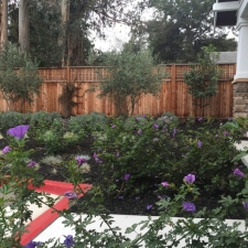 gallery-planter-beds-with-color