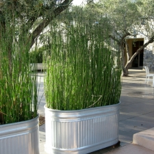 gallery-planters